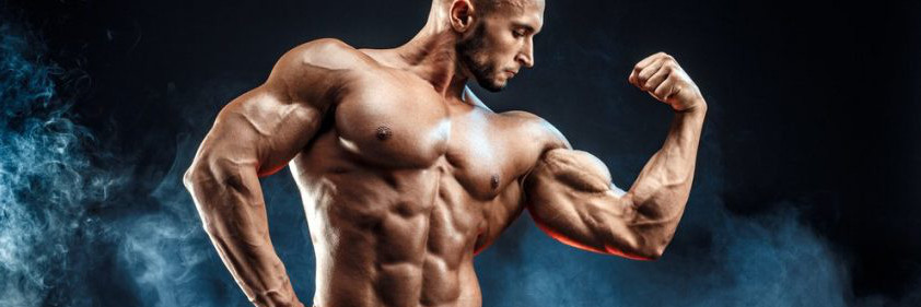 Suplementos de construcción corporal