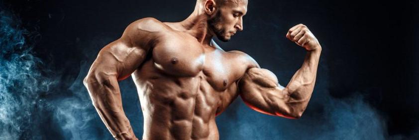 Body Building Ergänzungen