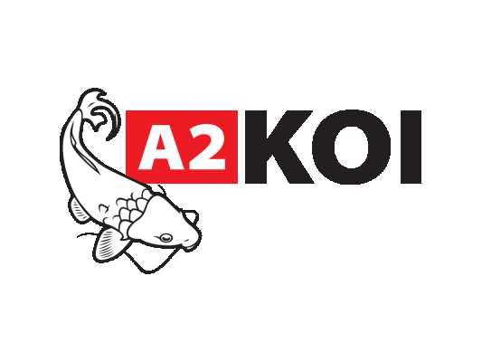 A2 Koi