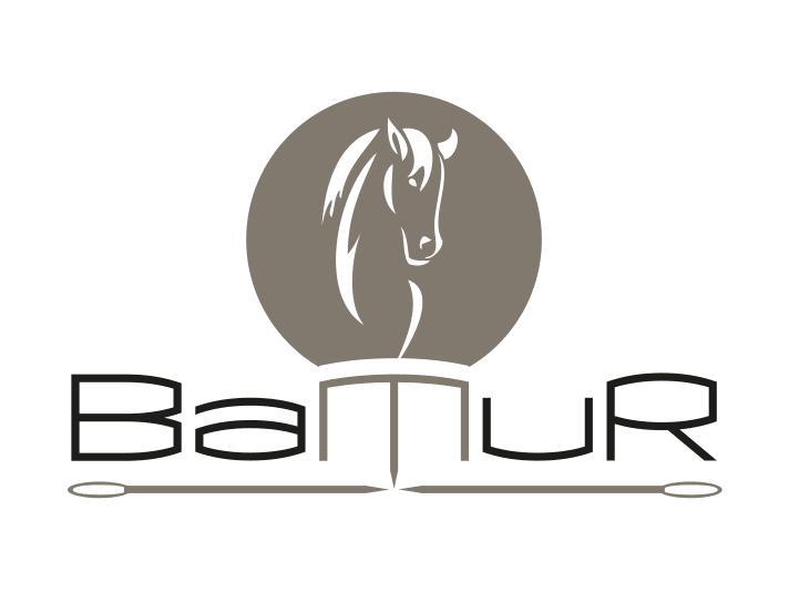 Bamur