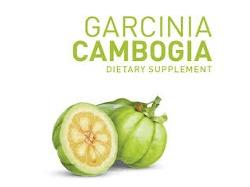 garcinia-cambogia.png
