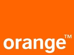 Orange Canguro 2