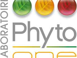 Phyto One