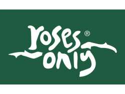 Roses Only New York