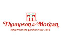 thompson-morgan.png