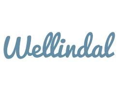 Wellindal Espana