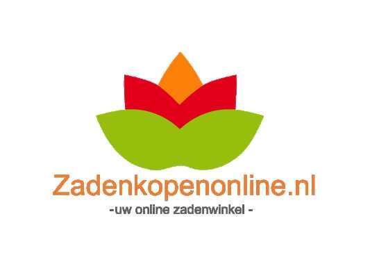 Zadenkopen Online