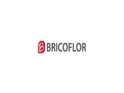 bricoflor-revetements-pour-sols-et-murs