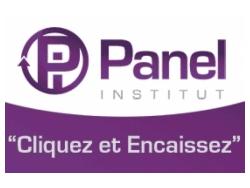 panel-institut