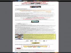 Auctionprofitformula