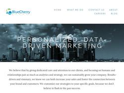 Blue Cherry Group