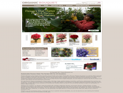 Organic Bouquet Eco Friendly Flowers Gourmet Gifts