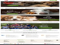 Tierschutz Shop Futter Kaufen Gutes Tun